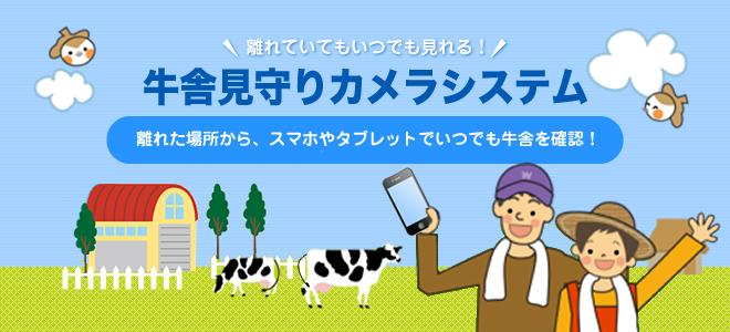 QNETの牛舎見守りシステム